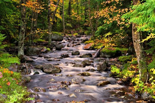 Mystical Mountain Stream Print by Brad Hoyt