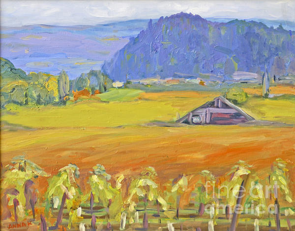Barbara Anna Knauf - Napa Valley Mountains