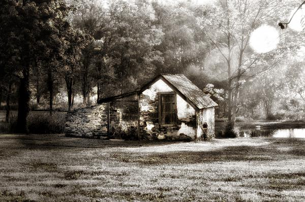 Narcissa Road Springhouse Print by Bill Cannon