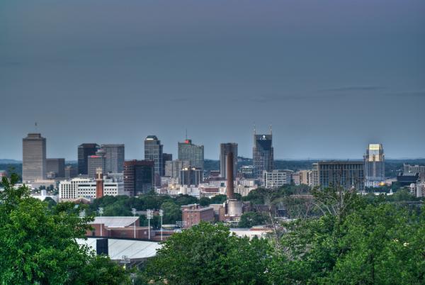 Nashville Skyline 2 Print by Douglas Barnett