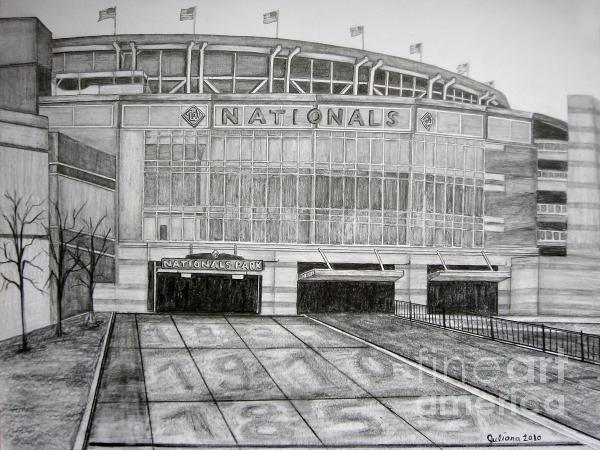 Nationals Park Drawing  - Nationals Park Fine Art Print