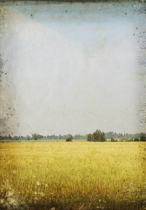 Nature Painting On Old Grunge Paper Print by Setsiri Silapasuwanchai
