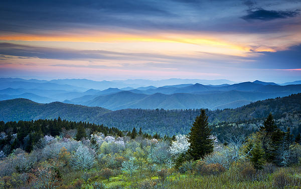 Dave Allen - NC Blue Ridge Parkway Landscape in Spring - Blue Hour Blossoms