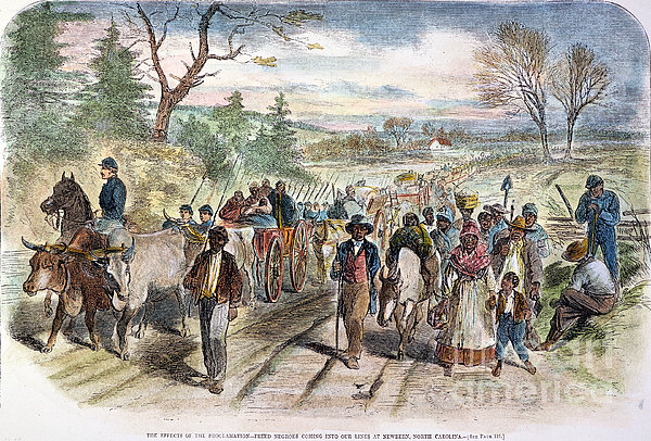 Nc: Freed Slaves, 1863 Print by Granger
