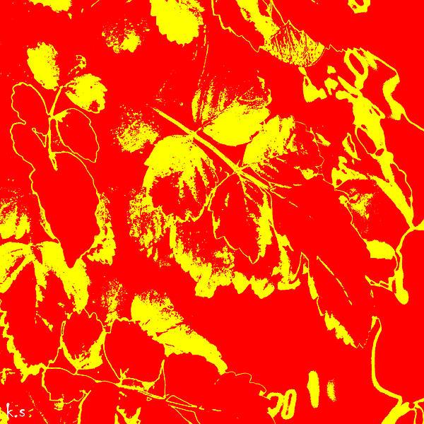 Negiot Print by Keren Shiker