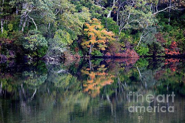 New England Fall Reflection Print by Carol Groenen