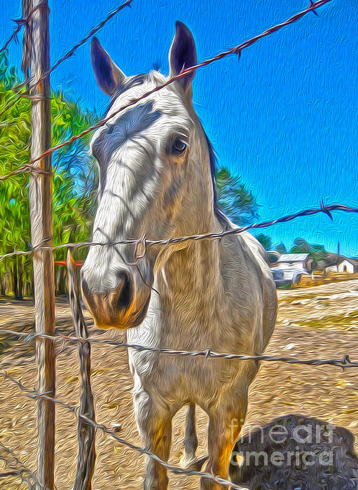 New Mexico Horse Print by Gregory Dyer