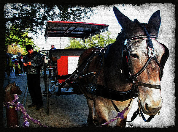 New Orleans Carriage Ride Print by Joan  Minchak
