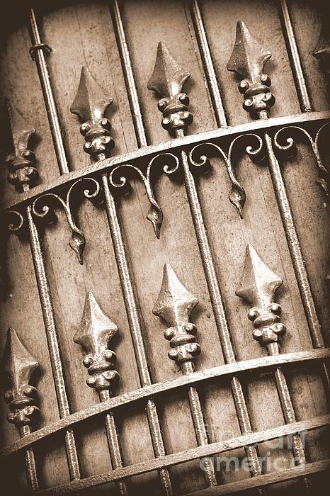 New Orleans Gate - Sepia Print by Carol Groenen