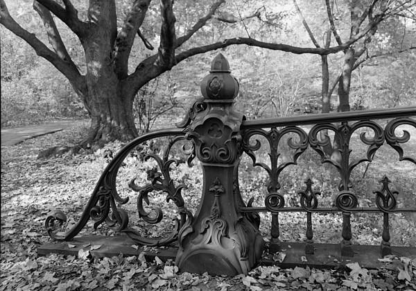 New York City,  Central Park, Bridge Print by Everett
