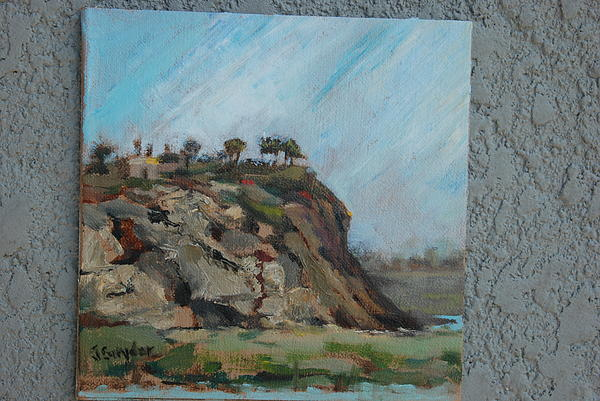 Joyce Snyder - Newport Beach Back Bay Cliff