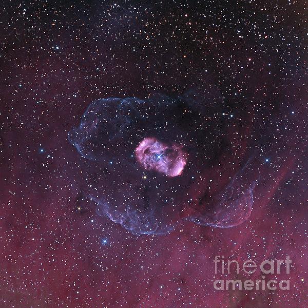 Ngc 6164, A Bipolar Nebula Print by Don Goldman