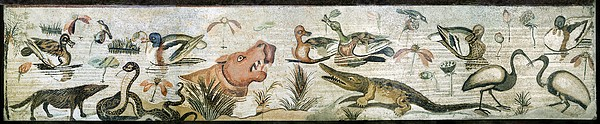 Nile Flora And Fauna, Roman Mosaic Print by Sheila Terry