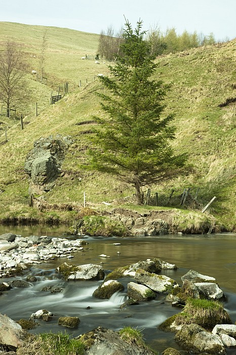 Northumberland, England A River Flowing Print by John Short