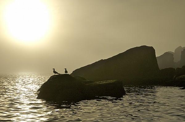 Norway, Tromso, Silhouette Of Pair Print by Keenpress