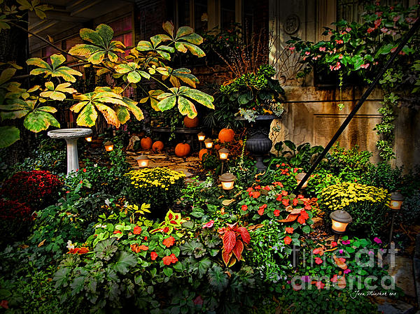 Joan  Minchak - November NYC Garden