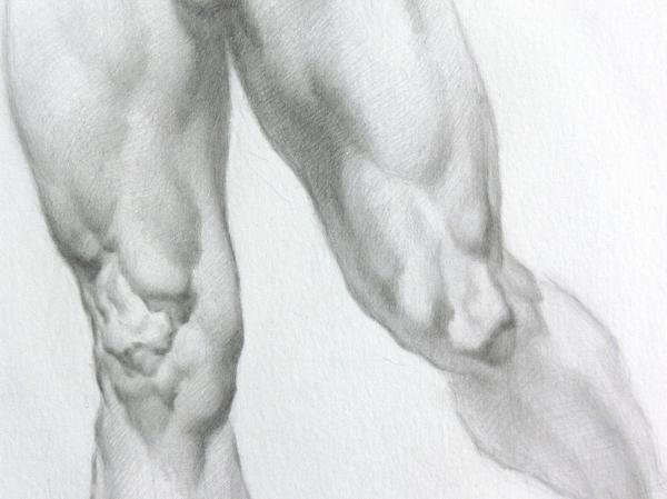 Nude 5c Drawing