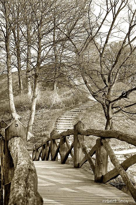 Nyborg Footbridge Print by Robert Lacy