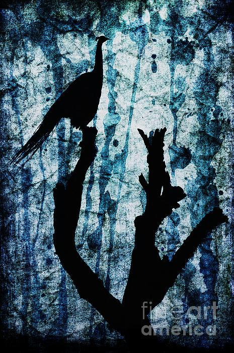 Obsidian Realm Print by Andrew Paranavitana
