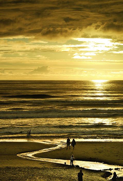 Dale Stillman - Ocean Play 2