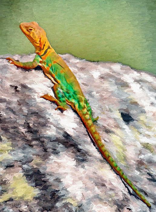 Oklahoma Collared Lizard Print by Jeff Kolker