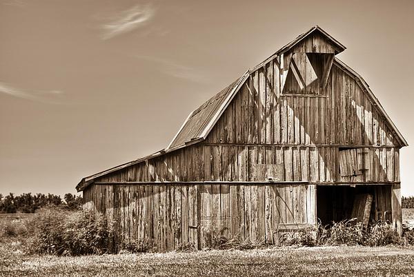 Old Barn In Sepia Print by Douglas Barnett