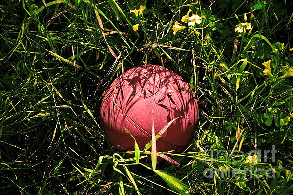 Old Basketball In The Grass Print by Robert Sawin