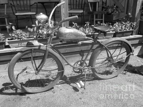Wild Rose Studio - Old Bike