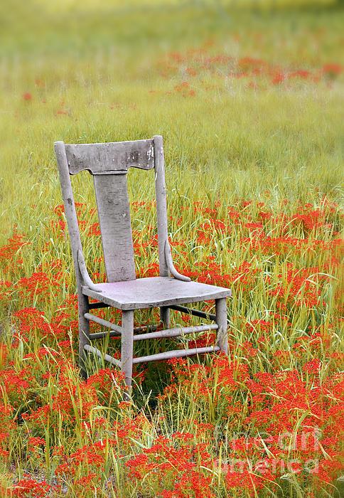 Old Chair In Wildflowers Print by Jill Battaglia