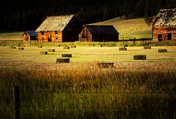 Old Homestead-potomac Montana Print by Thomas Schoeller