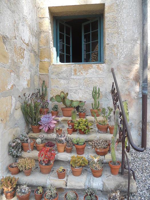 Valerie Gerard - Old Mission Courtyard Steps