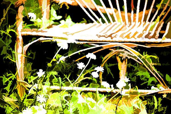 Old Rattan Chair Print by Bonnie Bruno