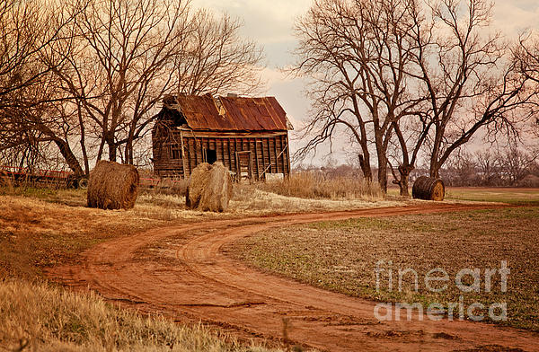 Iris Greenwell - Old Red Barn in the Prarie