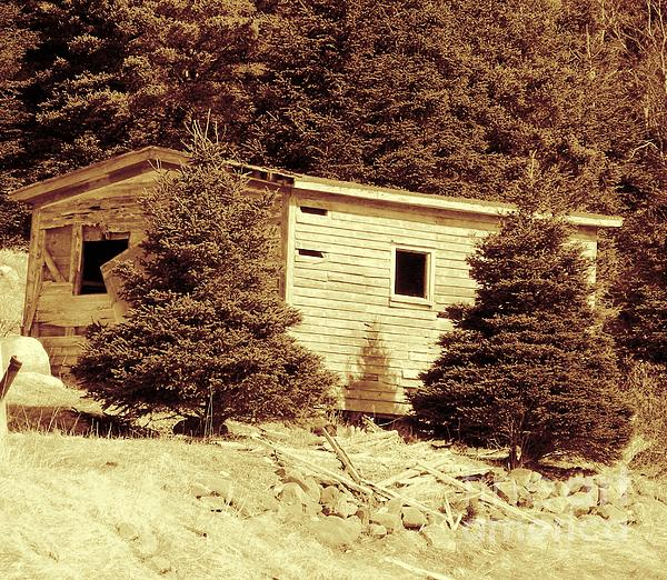 Old Shed Nothing Left But Memories Print by Barbara Griffin
