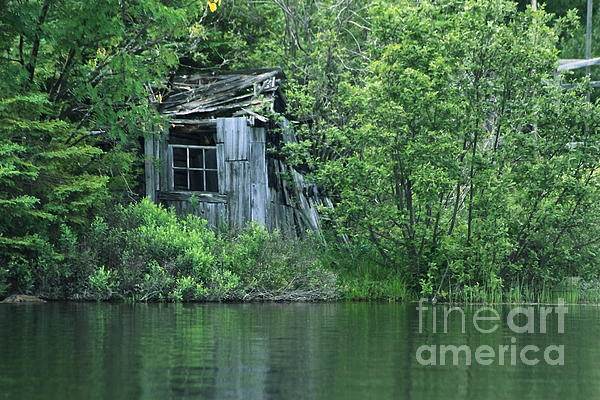 Old Shed On The Lake Print by Marjorie Imbeau