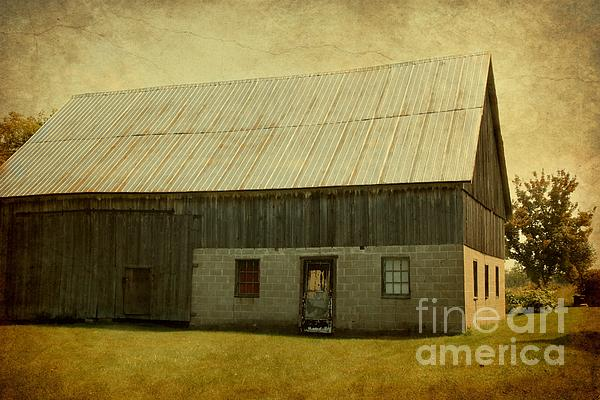 Old Textured Barn Print by Sophie Vigneault