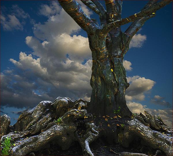Vladimir Kholostykh - Old Tree