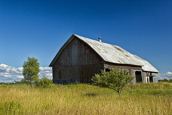 Randall Nyhof - Old West Michigan Barn