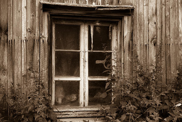 Tommi Saarela - Old Window