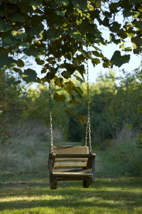 Old Wooden Swing By Michael Wall