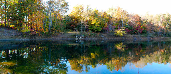On Gober's Pond Print by Max Mullins
