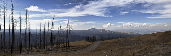 On Top Of The Mountains In Yellowstone National Park Print by Joe Gee