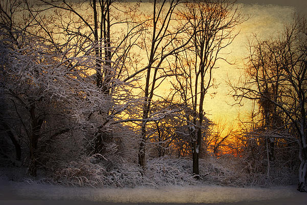 Once Upon A Winter Morning.. Print by Yelena Rozov