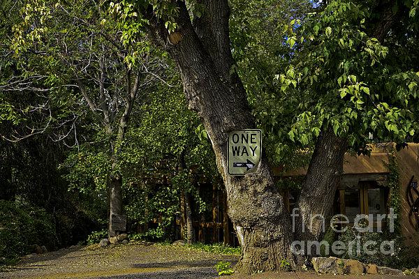 One Way Print by Madeline Ellis