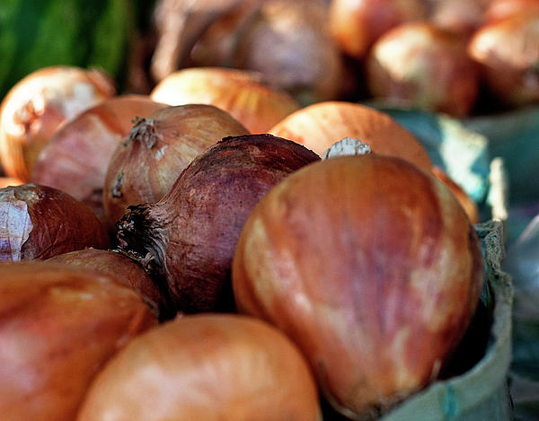 Onions At A Roadside Market Print by Toni Hopper