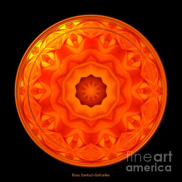 Orange rose kaleidoscope under glass by rose santuci sofranko for Rose under glass