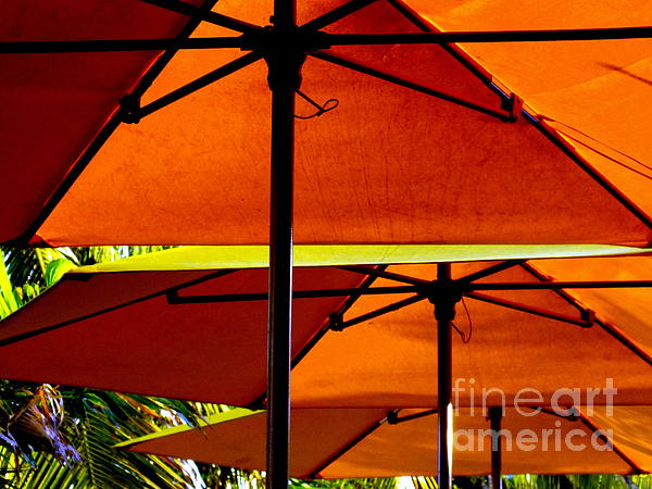 Orange Sliced Umbrellas Print by Karen Wiles