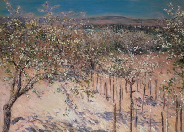 Orchard With Flowering Apple Trees Print by Gustave Caillebotte