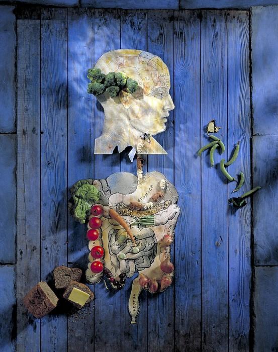 Organic Food, Conceptual Image Print by Paul Biddle