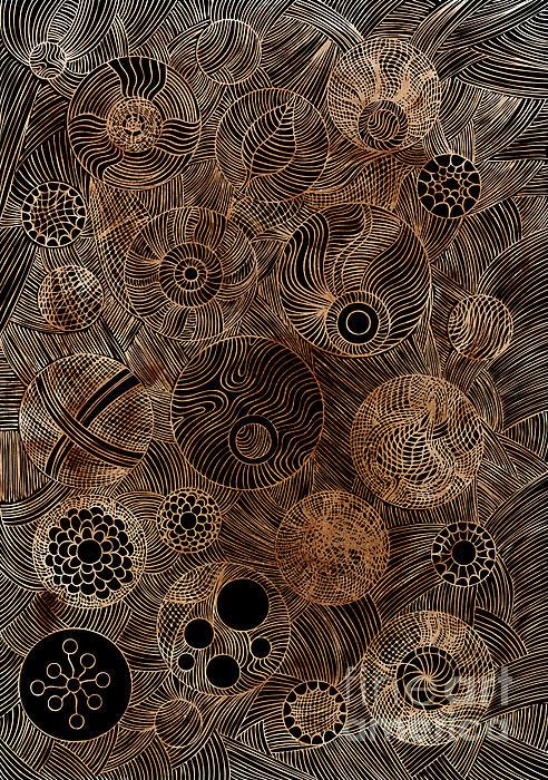 Organic Forms Print by Frank Tschakert